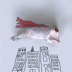 Un photographe talentueux, un chien marrant, un marqueur et un fond blanc = un résultat hilarant !