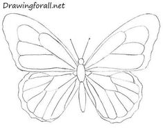 drawing butterfly painting How to Draw a Butterfly for Beginners Easy Butterfly Drawing, Easy Flower Drawings, Butterfly Sketch, Sunflower Drawing, Cute Easy Drawings, Butterfly Painting, Butterfly Art, Art Drawings Sketches, Pencil Drawings