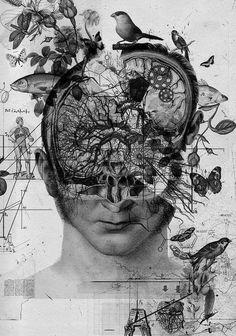 BIOLOGÍA • Genética. • Citología. • Biología molecular.