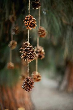 Cute hanging pinecone décor | 10 Cute Christmas Crafts - Tinyme Blog