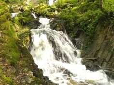 Tom Gill Waterfalls – Tarn Hows Loop from Coniston is an intermediate Hiking Tour. See this Tour and others like it, or plan your own with komoot! Hiking Tours, Gps Navigation, Waterfalls, Walks, Toms, Outdoor, Outdoors, Outdoor Games, The Great Outdoors