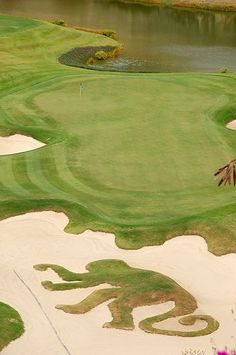 The world renowned Green Monkey Golf Club located at the Sandy Lane Golf Resort in Barbados.