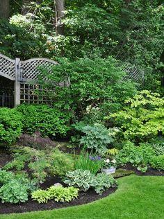 Three Dogs in a Garden: A Bird-Friendly Shade Garden #gardeningdesign