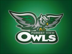 Forest View Owls