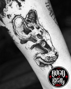 Gato para Ann en el estudio Sucio X Real Tatuajes (La Plata - Buenos Aires) #Tattoo #Tatuaje #Argentina #TattooArgentina #Gualeguaychú #LaPlata #TattooGualeguaychú #TattooLaPlata #Ink #SucioXReal #SantoUno #Art #TattooArt #Gato #Cat