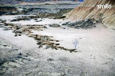 Desierto Bardenas Oscar, Mount Rainier, Grand Canyon, Mountains, Nature, Travel, Wilderness, Creative Photography, Author