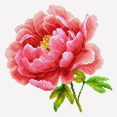 Pink peony (Free cross stitch pattern)