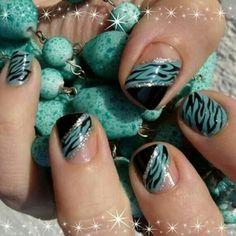 Turquoise & black zebra