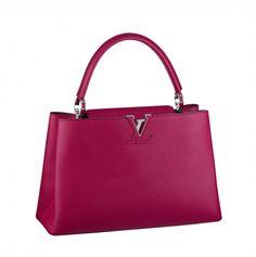 55ac91071669  Handbag Louis  Vuitton Autunno Inverno 2014-2015 Les Capucines  bags  bag