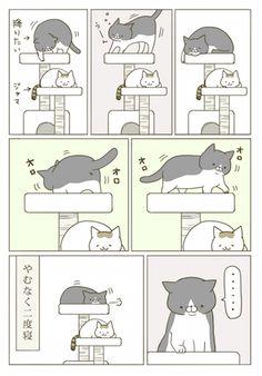 漫画 Cat Comics, Funny Cute, Comic Strips, Cute Cats, Animals And Pets, Kittens, Cats, Pinstriping, Beautiful Cats