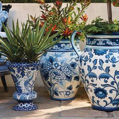 🌟Tante S!fr@ loves this📌🌟Our Blue and White Painted Tabletop Planter is an indulgence in ornate foliage, exotic birds and ceramic tile designed artistry. Pot Jardin, Blue And White China, Blue China, Ginger Jars, White Decor, Garden Pots, Garden Bed, Tree Garden, Chinoiserie