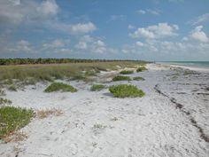 A beautiful piece of uncomercialized beach in Florida.  Caladesi Island.