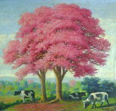 'Lapacho rosado' Pablo Alborno - Paraguay