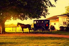 10 Ways to Live Frugally Like the Amish You are in the right place about how to cleaning bathroom Here we offer you the most beautiful pictures about the spring cleaning bathroom you are looking for. Spring Cleaning Bathroom, Diy Home Cleaning, Cleaning Wood, Deep Cleaning Tips, Household Cleaning Tips, House Cleaning Tips, Natural Cleaning Products, Cleaning Solutions, Cleaning Hacks