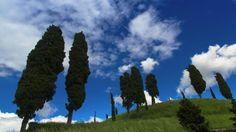 Fagagna countryside (Udine, Italy) - Photo by Piero Persello #canon #nature #tree #roman #countryside #sky