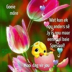 Funny Good Morning Quotes, Good Morning Wishes, Lekker Dag, Afrikaanse Quotes, Goeie More, Special Quotes, Mondays, Mornings, Jay