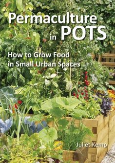 "Read ""Permaculture in Pots How to Grow Food in Small Urban Spaces"" by Juliet Kemp available from Rakuten Kobo. Permaculture in Pots by Juliet Kemp. A month by month guide to what to sow and grow on a balcony or in a container garde. Permaculture Design, Permaculture Principles, Permaculture Farming, Pot Jardin, Organic Gardening Tips, Urban Gardening, Indoor Gardening, Balcony Gardening, Organic Gardening"