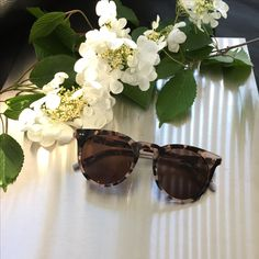 Calvin Klein - You can purchase the Calvin Klein eyewear collection on www.eyecatchonlin.com - These fashion glasses are available with or without prescription lenses