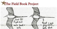 The Field Book Project's overall mission is to create one online location for scholars and others to visit when searching for field books and other field research materials.