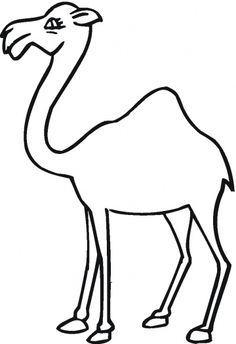 Camel 18 Coloring Page From Camels Category