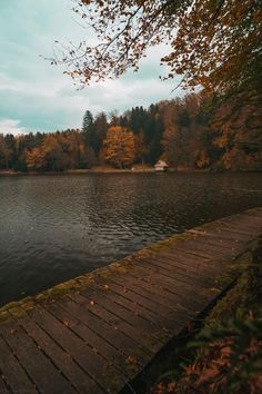 A lake in northern Croatia in November Nature Aesthetic, Brown Aesthetic, Fall Inspiration, November Wallpaper, Autumn Cozy, Autumn Photography, Autumn Aesthetic Photography, Aesthetic Pictures, Fall Halloween
