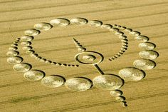 A new crop circle was reported on July 28th, 2012 in Wiltshire, UK. The farmer is allowing access to the formation and has provided a donation box.