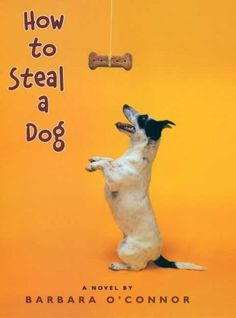 How to Steal a Dog activities/discussion questions