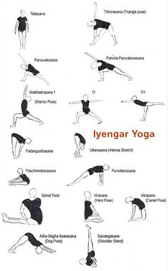 70 iyengar yoga sequences ideas  iyengar yoga yoga