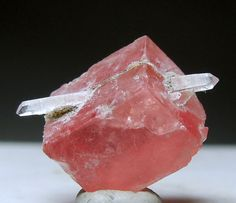 Rhodochrosite formed around a quartz crystal