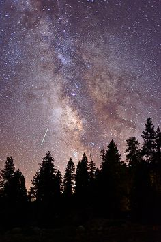 Yosemite, starry starry night..