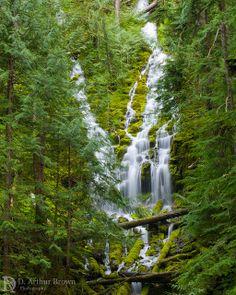 Upper Proxy Falls, Willamette National Forest, Oregon, USA