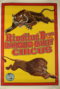 We offer you a Vintage Ringling Bros Barnum Bailey Circus Poster Lion And Tiger DesignGreatest Show on by 23 inch paper.Condition is PreownedShipped with USPSSome aging on back of the poster. Circus Poster, Circus Art, Circus Room, Circus Train, Dark Circus, Circus Theme, Tiger Poster, Barnum Bailey Circus, Halloween Circus