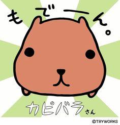 kapibara san <3
