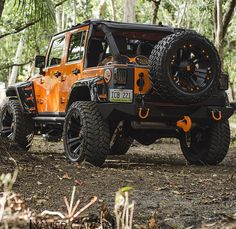 Off road with a Jeep