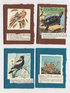 Handmade Bird Notecards with Collaged by wasnowcreations on Etsy, $16.00