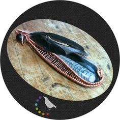 Orthoceras Worry Stone. Copper Wire Wrapping