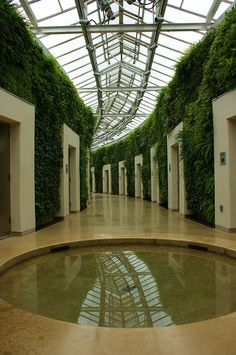 Longwood Gardens Greenwall (2) | Flickr - Photo Sharing!