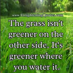 The grass isn't greener on the other side