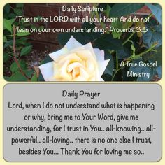 "Daily Scripture ""Trust in the LORD with all your heart And do not lean on your own understanding."" Proverbs‬ ‭3‬:‭5‬   Daily Prayer Lord, when I do not understand what is happening or why, bring me to Your Word, give me understanding, for I trust in You.. all-knowing.. all-powerful.. all-loving.. there is no one else I trust, besides You... Thank You for loving me so.. #dailyscripture #dailyprayer #atruegospelministry #morningprayer #morningscripture #scripturequote #biblequote"