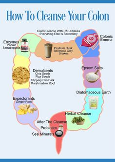 Most experts would agree that a regular colon cleanse program can ensure a better way of living. They believe that other forms of colon cleansing such as colon Colon Health, Gut Health, Health And Nutrition, Health Fitness, Child Nutrition, Colon Cleansing Foods, Herbal Colon Cleanse, Cleanse Detox, Colon Detox