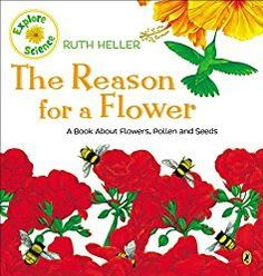 Flower Science Projects: Parts of a Flower & Pollination for Kids - Edventures with Kids