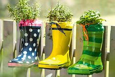 Különleges virágcserepeket készíthetünk, ha a régi gumicsizmákat vagy gumipapucsokat felszegezzük egy fából készült falra, megtöltjük földdel (a talpába lyukat kell vágni vízelvezetőnek!), majd virágokat ültetünk bele. Rubber Rain Boots, Diy, Bricolage, Do It Yourself, Homemade, Diys, Crafting