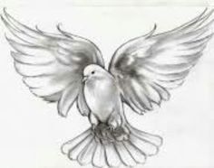 Dove tatto