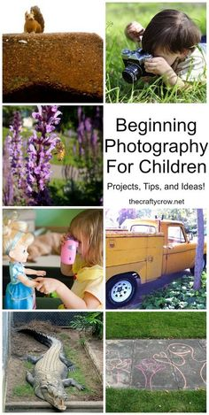 The Crafty Crow beginning photography for children projects tips ideas