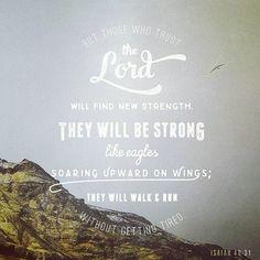 Isaiah 40:31 #amen #apostolic #God #abundanceofrain #befree #love #Christ #awesomepreaching #allgoodthings #Deus #authentic#awesome #adonai #amor #abundanceofjoy #allyouneedislove #caring #bible #biblia #breakaddictions#teamJesus #believe #brainfood #beyourrealself #blessed #blessings #bepositive #breadoflife #buildup