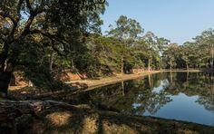 Ohne dass wir uns verlaufen hätten, wären wir hier nicht vorbeigekommen: Wasserbecken am Phimeanakas, dem Himmlischen Palast in Angkor Thom