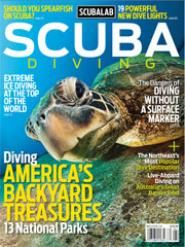 California's 10 best Dive Sites: MPAs  http://www.scubadiving.com/article/news/california-mpas-top-10-dive-sites#