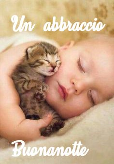 Snuggle Time - March 2016 - We Love Cats and Kittens So Cute Baby, Cute Babies, Animals For Kids, Cute Baby Animals, Animals And Pets, Funny Animals, Cute Kittens, Cats And Kittens, I Love Cats