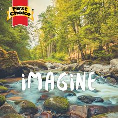 Imagine a world without plastic.Now let's focus on what we can do to make that dream come true. First Choice, Sustainability, Plastic, Let It Be, Photo And Video, World, Day, How To Make, Instagram