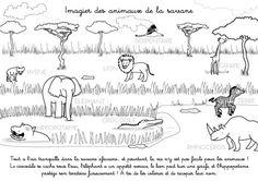 printable coloring page in French: Imagier des animaux de la Savane